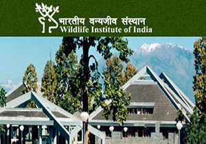 Wildlife Institute of India Dehradun